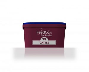 FeedCo Cattle Booster